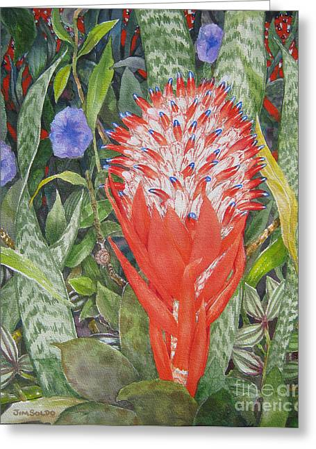 Bromeliad Greeting Cards - Torch Bromeliad Greeting Card by Jim Soldo