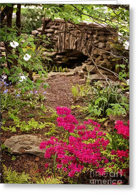 Best Sellers -  - Cheekwood Greeting Cards - Touch Of Spring Greeting Card by Cheryl Davis