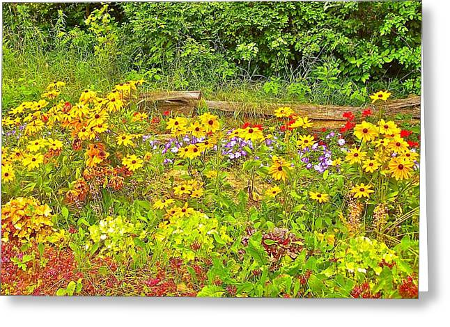 Touche' Fencing With Flowers Greeting Card by Randy Rosenberger