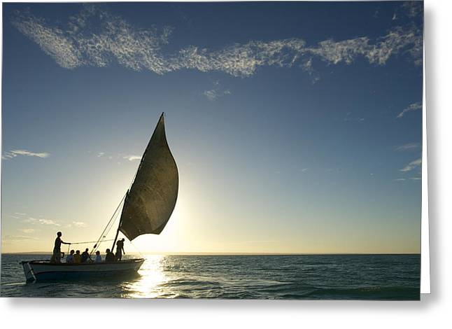Mid Adult Women Greeting Cards - Tourists On A Dhow Sailing Greeting Card by Jad Davenport