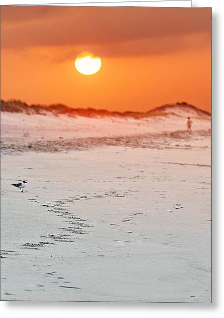 Beaches Reliefs Greeting Cards - Toward the Sunrise Greeting Card by Vicki Jauron
