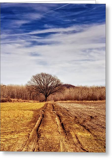 Defiance Greeting Cards - Towards The Tree Greeting Card by Bill Tiepelman