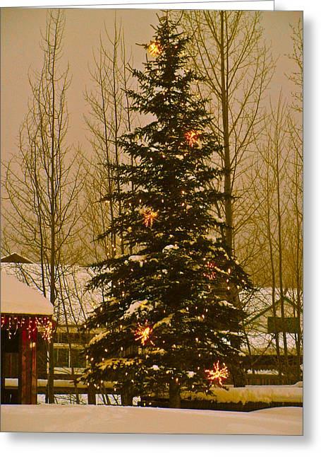 Bob Berwyn Greeting Cards - Town Tree Greeting Card by Bob Berwyn