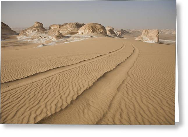 Middle Of Nowhere Greeting Cards - Tracks Run Through The Sand Dunes Greeting Card by Taylor S. Kennedy