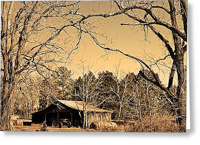 Tractor Shed Greeting Card by Patricia Motley