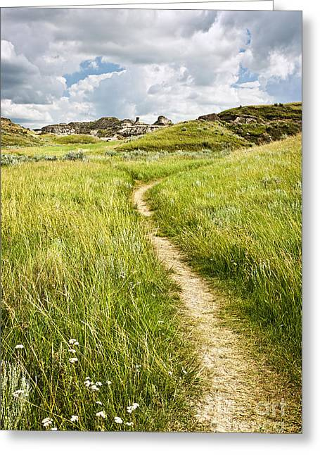 Dinosaur Provincial Park Greeting Cards - Trail in Badlands Greeting Card by Elena Elisseeva