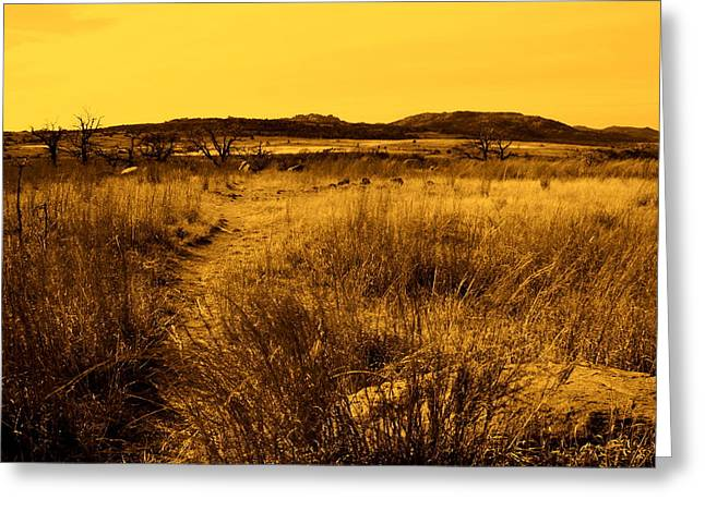 Mickey Harkins Greeting Cards - Trail to the Valley II Greeting Card by Mickey Harkins