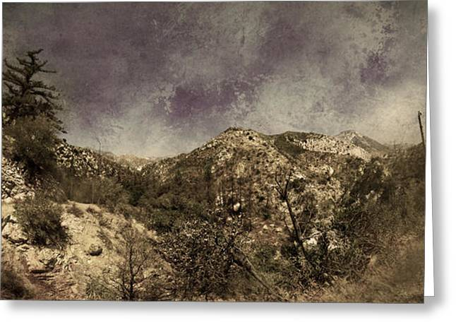 Angeles Forest Greeting Cards - Trails  Greeting Card by Torgeir Ensrud