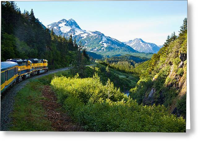 Seward Greeting Cards - Train from the North Greeting Card by Adam Pender