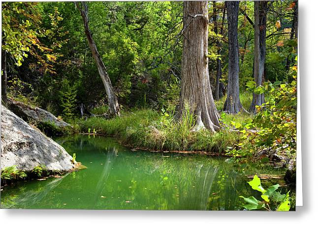 Hamilton Pool Greeting Cards - Tranquil Green Pool Greeting Card by Mark Weaver