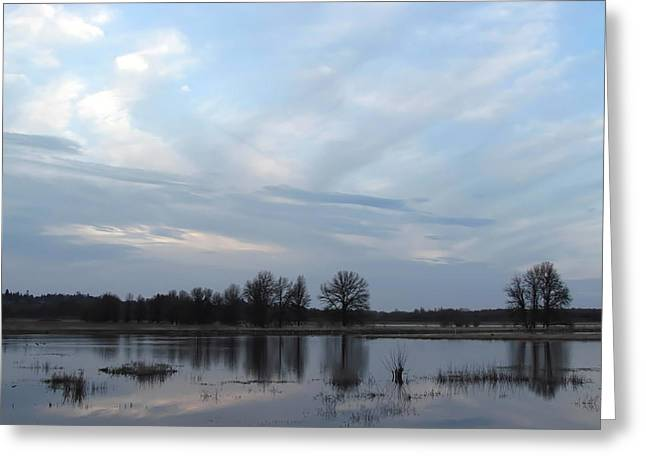 Wildlife Refuge. Greeting Cards - Tranquil Morning Greeting Card by Angie Vogel