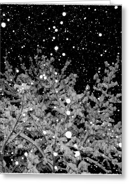 Striking Images Greeting Cards - Tranquil Snowfall Greeting Card by Will Borden