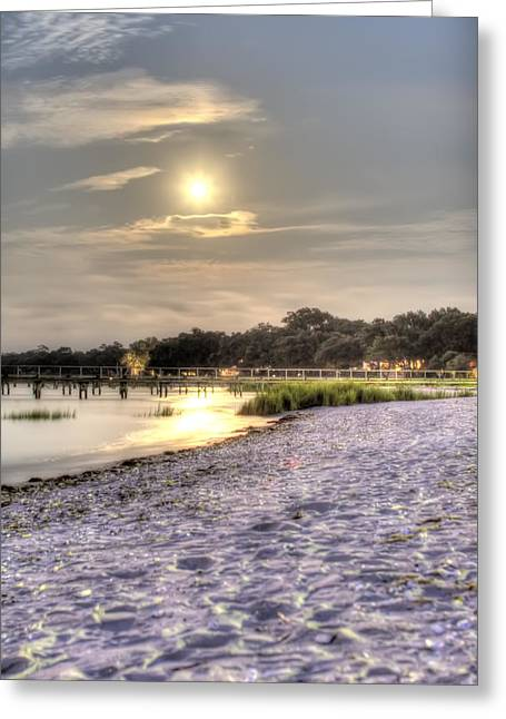 Moon Rise Greeting Cards - Tranquil Southern Night Greeting Card by Dustin K Ryan