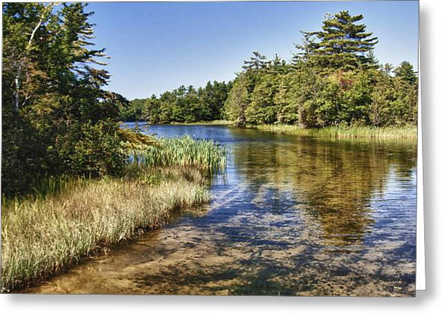 Tranquil Stream in Northern Michigan Greeting Card by Christopher Purcell
