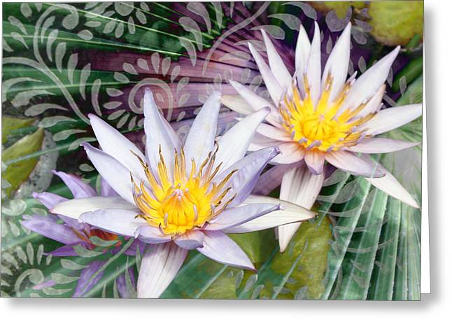 Lotus Blossoms Greeting Cards - Tranquilessence Greeting Card by Christopher Beikmann