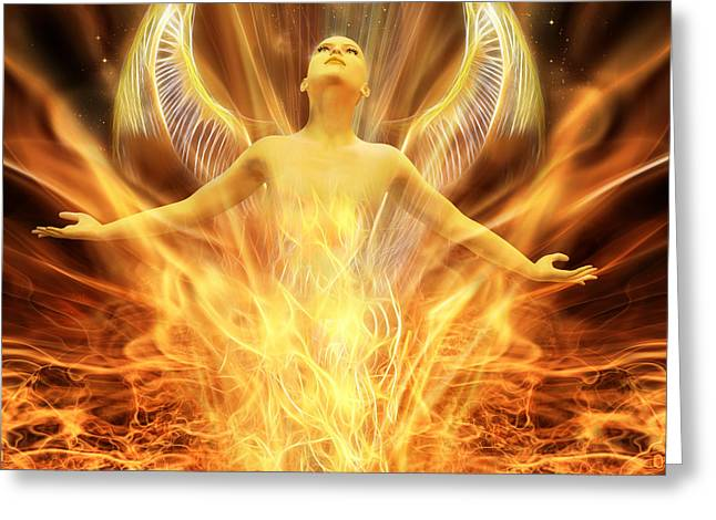 Transcend Greeting Card by John Edwards