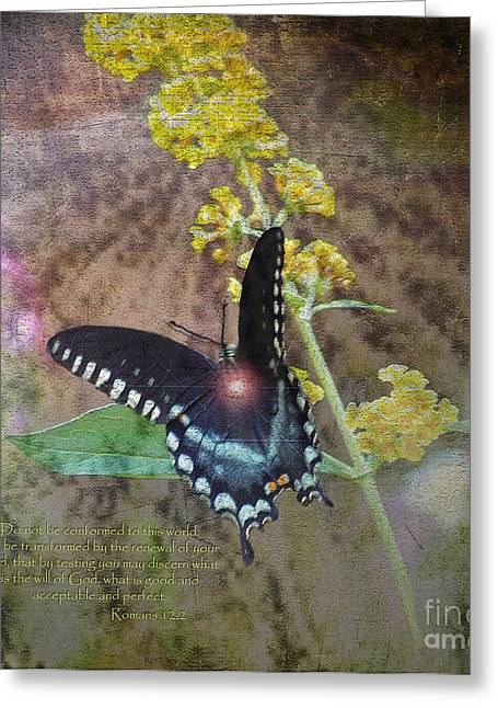 Born Again Greeting Cards - Transformation Greeting Card by Patricia Griffin Brett