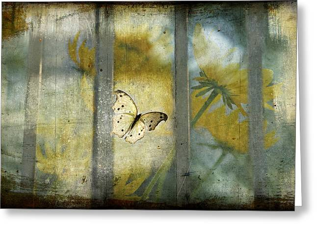 Imprisonment Greeting Cards - Trapped  Greeting Card by Bonnie Barry