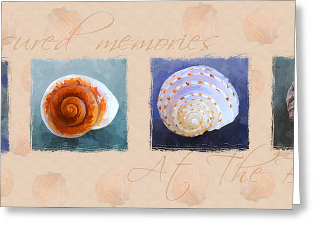 Seashell Art Greeting Cards - Treasured Memories Sea Shell Collection Greeting Card by Jai Johnson
