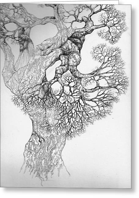Pen And Ink Drawing Digital Art Greeting Cards - Tree 21 Greeting Card by Brian  Kirchner