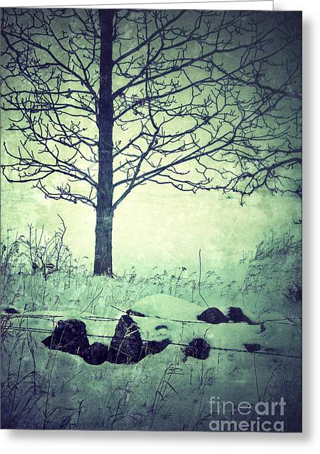 Winter Scenes Rural Scenes Greeting Cards - Tree and Fence in the Fog and Snow Greeting Card by Jill Battaglia