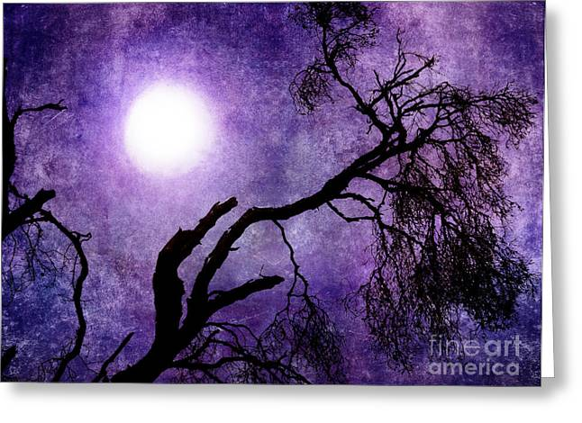 Alto Greeting Cards - Tree Branch in Purple Moonlight Greeting Card by Laura Iverson