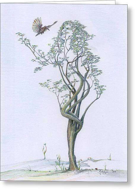 Gaia Drawings Greeting Cards - Tree Dancer in Flight coloured Greeting Card by Mark Johnson