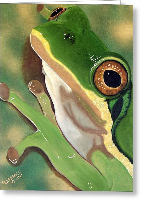 Tadpole Greeting Cards - Tree Frog Eyes Greeting Card by Debbie LaFrance