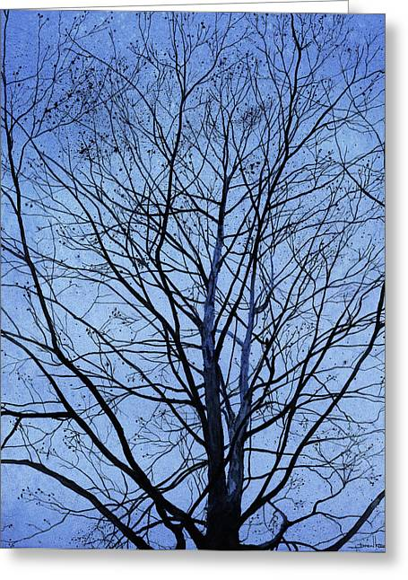 Tree. Sycamore Greeting Cards - Tree in Winter Greeting Card by Andrew King