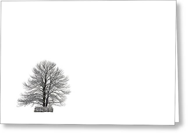 Bare Tree Photographs Greeting Cards - Tree isolated under the snow in the middle field in winter. Greeting Card by Bernard Jaubert