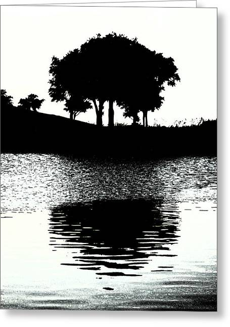Www.eye4lifephotography.com Greeting Cards - Tree Of Life Greeting Card by Alicia Morales