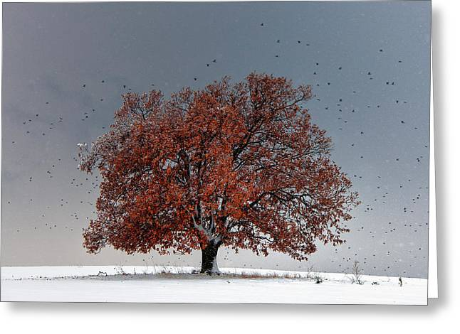 Tree of Life Greeting Card by Evgeni Dinev