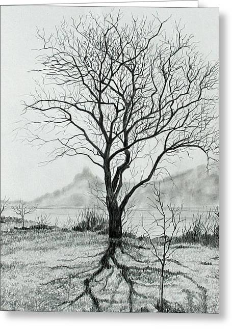 Bare Trees Drawings Greeting Cards - Tree of Life Greeting Card by Mary Singer
