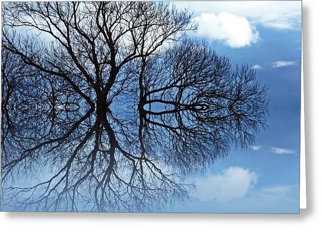 Tree Of Life Greeting Card by Sharon Lisa Clarke