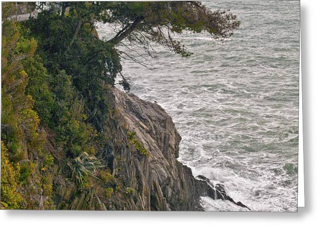 Tree on a Cliff Greeting Card by LYNN ANDREWS
