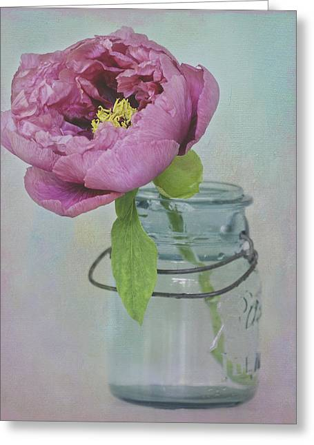 Mechanism Photographs Greeting Cards - Tree Peony Blossom Greeting Card by Cheryl Butler