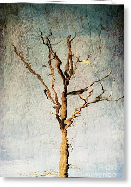 Paint Effect Greeting Cards - Tree Reflecting Water Greeting Card by Paul Ward