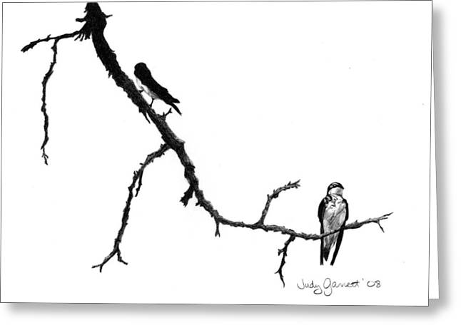Bird On Tree Drawings Greeting Cards - Tree Swallow Silhouette Greeting Card by Judy Garrett