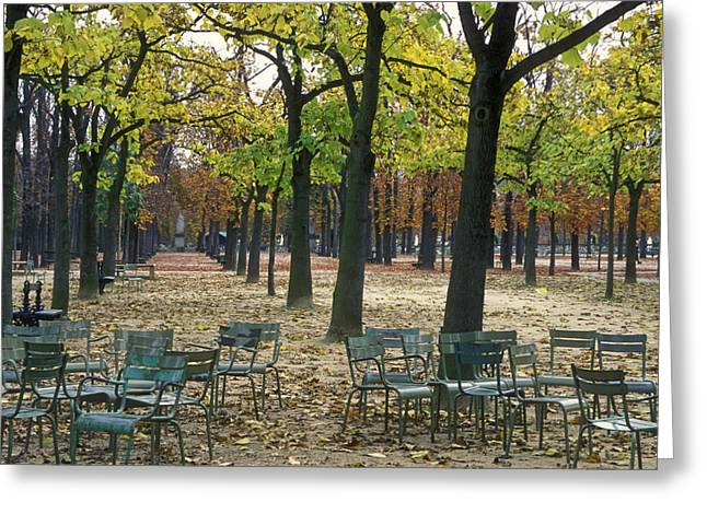 Fallen Leaf Greeting Cards - Trees And Empty Chairs In Autumn Greeting Card by Stephen Sharnoff