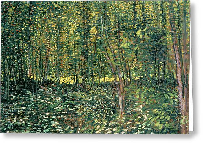 1887 Greeting Cards - Trees and Undergrowth Greeting Card by Vincent Van Gogh