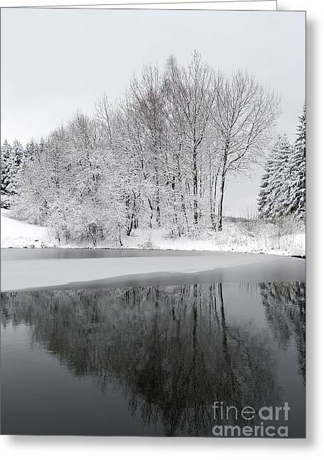 Snowy Day Greeting Cards - Trees By The Lake Greeting Card by Michal Boubin