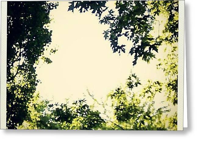#trees #green #sky #pattern #style Greeting Card by My Mcwp