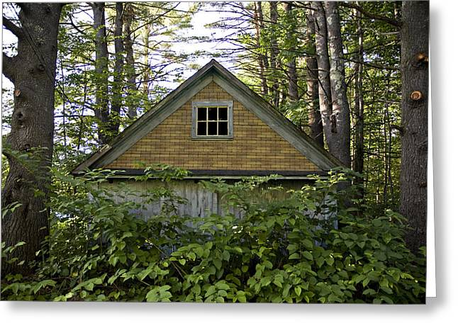 Abandonded Greeting Cards - Trees Grow Up Around An Abandoned House Greeting Card by Hannele Lahti