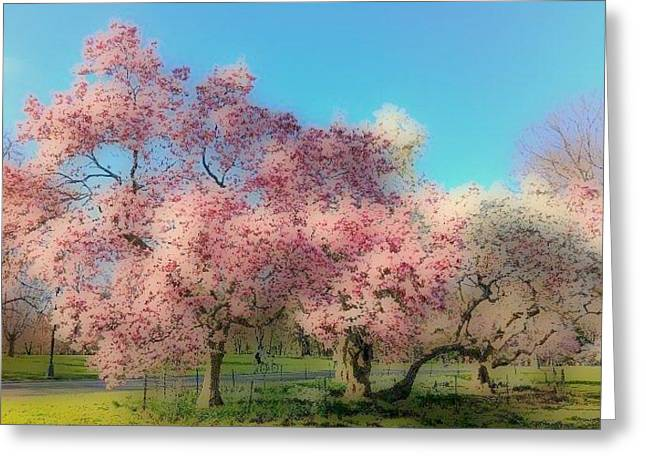 Trees In Bloom Greeting Card by YoMamaBird Rhonda