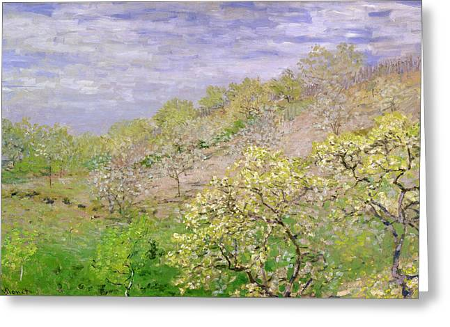 Tree Outside Greeting Cards - Trees in Blossom Greeting Card by Claude Monet