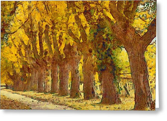 Trees In Fall - Brown And Golden Greeting Card by Matthias Hauser