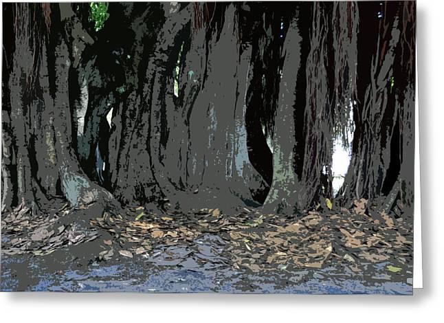 Banyan Tree Greeting Cards - Trees of the Banyan Greeting Card by David Lee Thompson