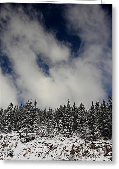 Arapaho Greeting Cards - Trees of the Sky Greeting Card by Dana DiPasquale