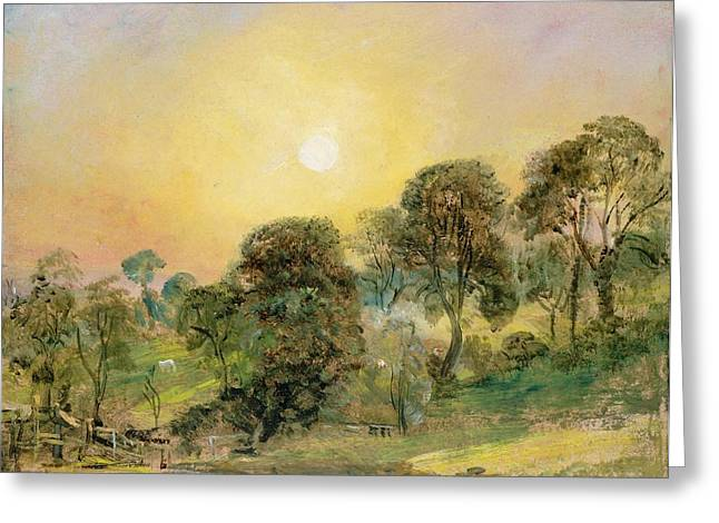 The Trees Greeting Cards - Trees on Hampstead Heath at Sunset Greeting Card by John Constable