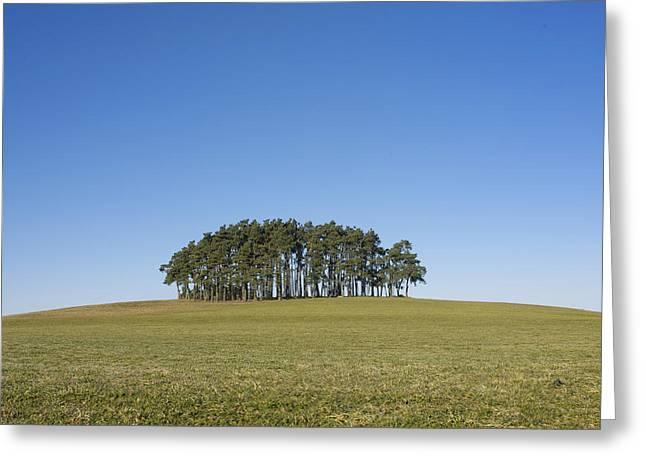 Trees on the hill Greeting Card by BERNARD JAUBERT